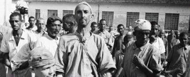Holocausto Brasileiro Hospital Colônia